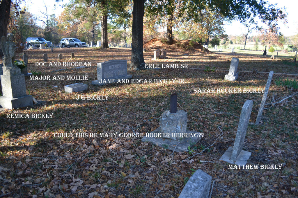 Harmony Grove Plot