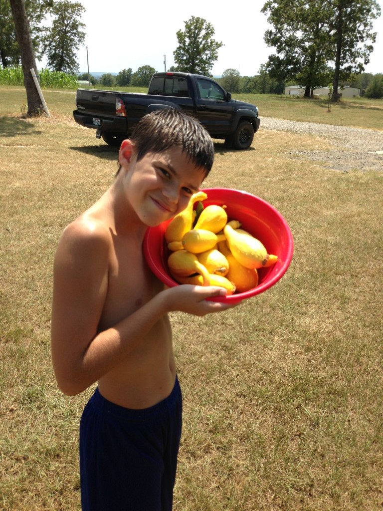 Knucklehead with Squash Pickings