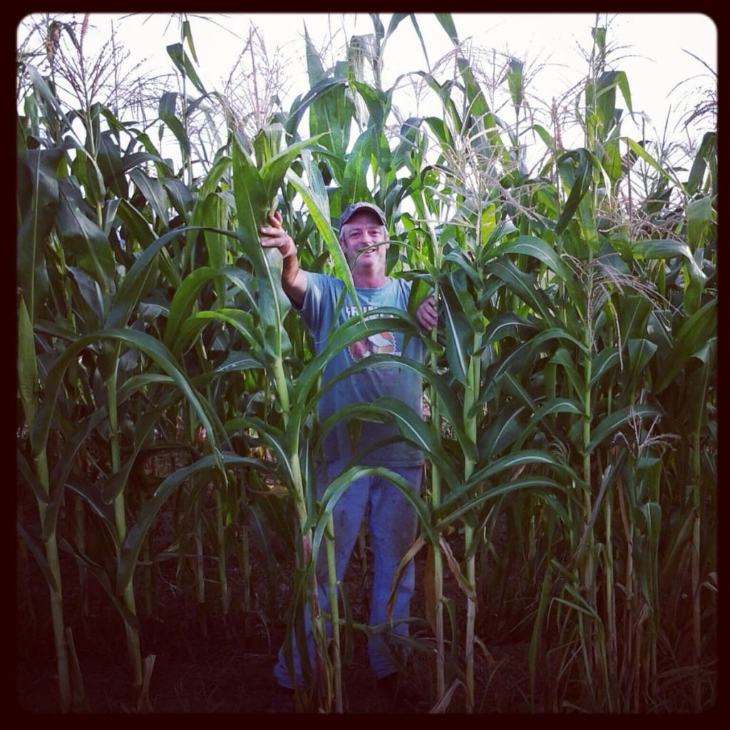 The Hubs in the Corn